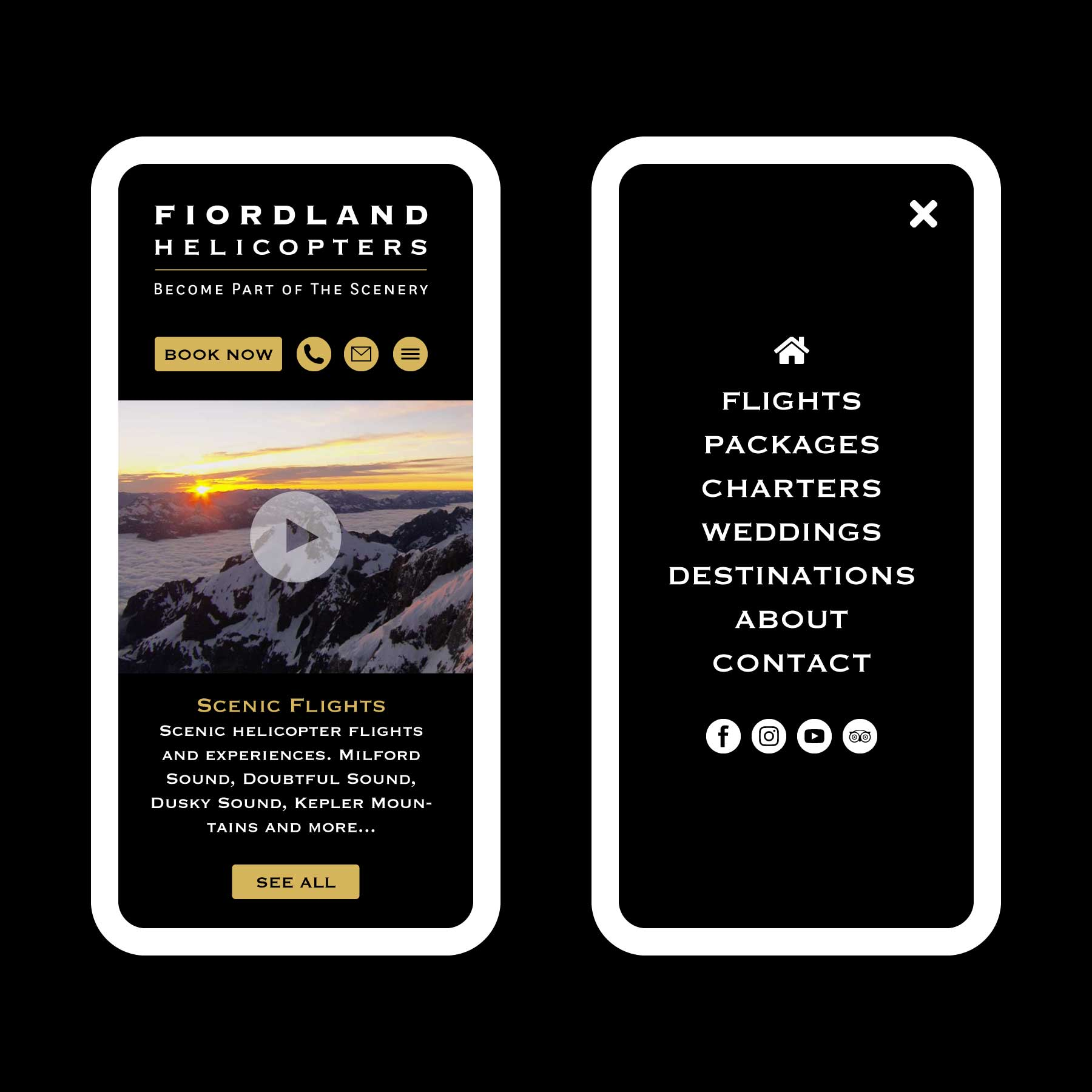 Fiordland Helicopters Scenic Flights Queenstown Web Design